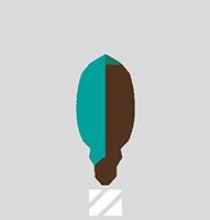 icn_advies_small